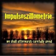 "Das erste Album meiner Band ""Impulsoszillometrie"""
